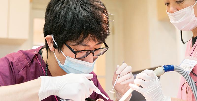 歯科医師教育スケジュール